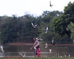 Os 12 melhores estados do Brasil para se viver bem