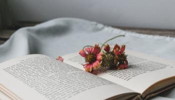 Os 16 melhores livros de romance de época para se emocionar