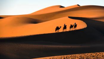 Os 12 maiores desertos do mundo